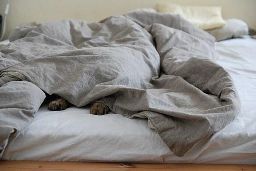 Maak je bed op dag