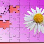 noot,dag vandenoot,puzzel,puzzle